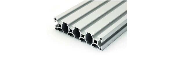 Aluminiumprofil 30x120 B-Typ Nut 8
